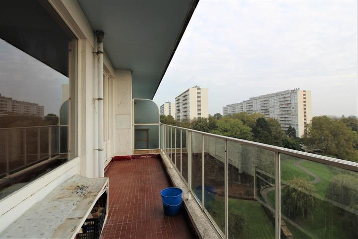 Appartement - Asse Zellik - #3883299-2